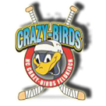 CrazyBirds